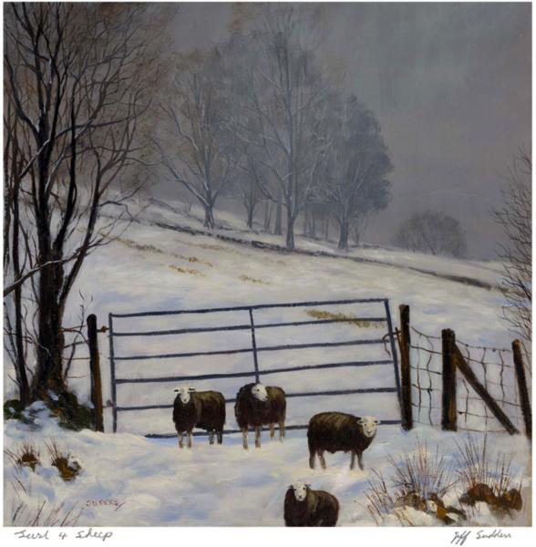 Just 4 Sheep