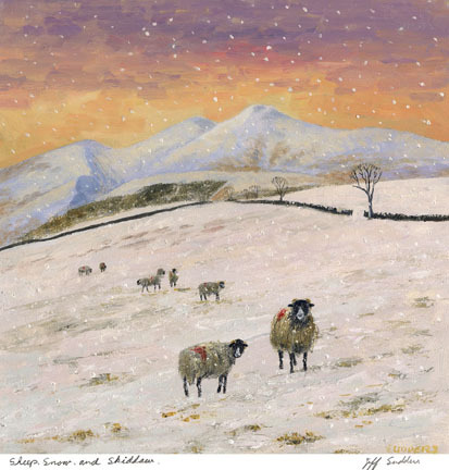 Sheep, Snow, Skiddaw
